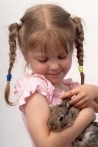 Czy kupować dziecku królika